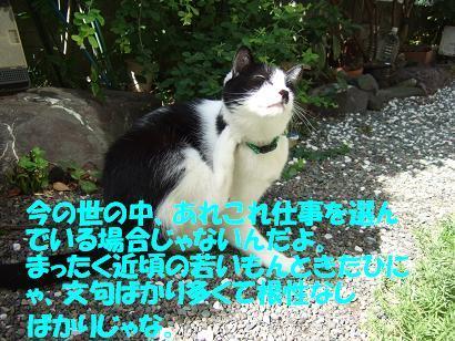 DSCF3396a.JPG
